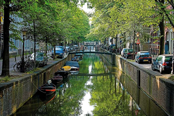 "Amsterdam ist ""European City of the Trees 2012"""