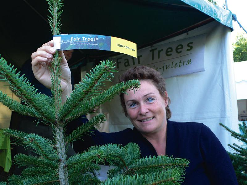 Foto: Informationszentrum Fair Trees