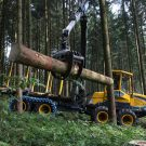Forwarder EcoLog 574D