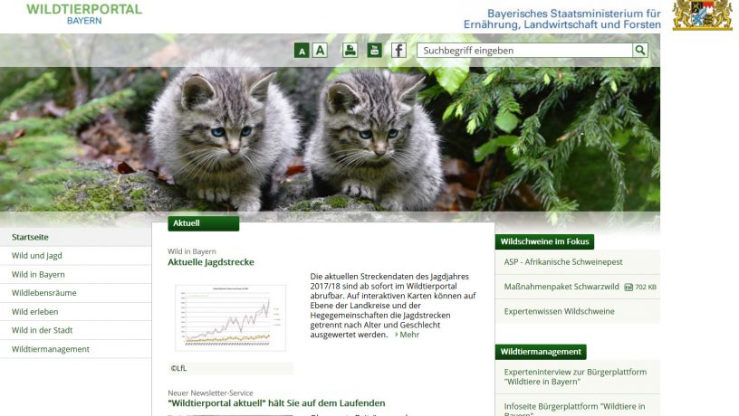 Screenshot des Wildtierportals Bayern