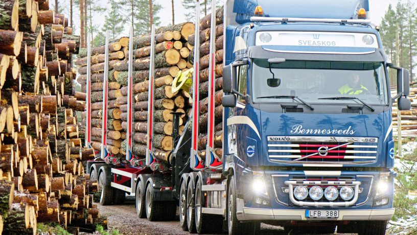 Bennesveds-Holztransport-74t