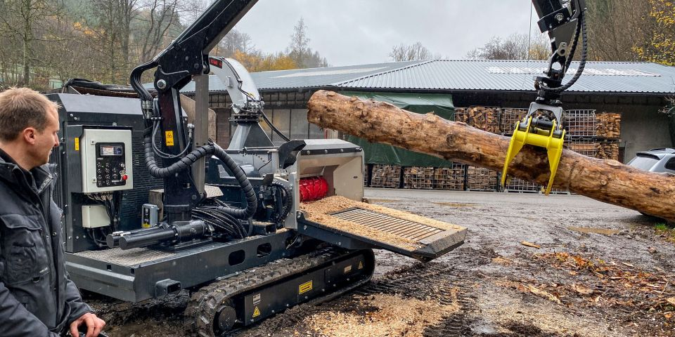 Europe Forestry